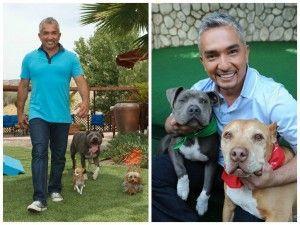 Le célèbre entraîneur César Millán recommande utiliser le gazon artificiel pour les animaux de compagnie