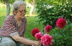Personnes âgées et gazon synthétique