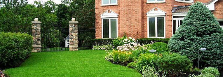 Il est possible d'éviter les effets de la pénurie d'eau, si évidents dans les jardins si la pelouse naturelle est remplacée par du gazon artificiel