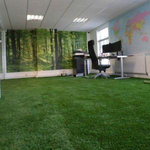 Gazon synthétique dans un bureau à domicile