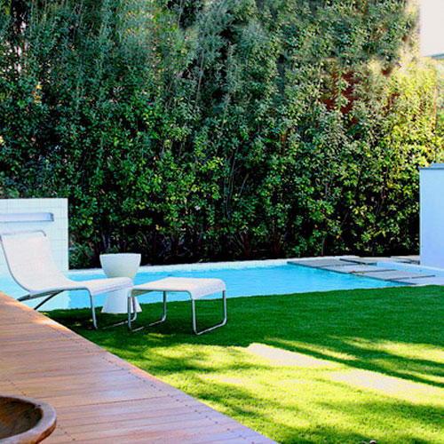 Gazon synthétique et la piscine