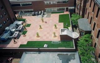 Gazon synthétique sur les toits