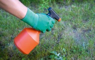 Préparation du jardin pour la pose de gazon synthétique