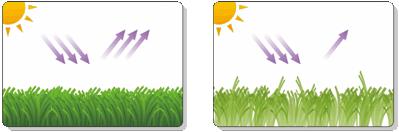 Radiation solaire sur le gazon artificiel
