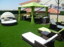 Terrasse sur le toit et gazon synthétique